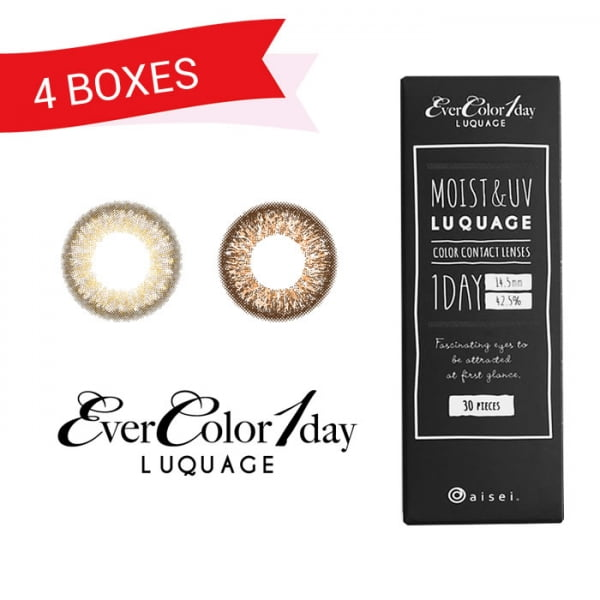 EverColor 1 Day Luquage 30 Pack (4 Boxes)